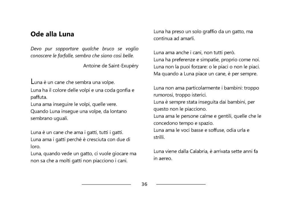 https://www.progettoempatia.com/wp-content/uploads/2020/03/Luna-va-in-montagna-c-09-2019-Olivucci-rel.03-9.09.2019_Rev.-stampa-light_Pagina_038-1024x724.jpg