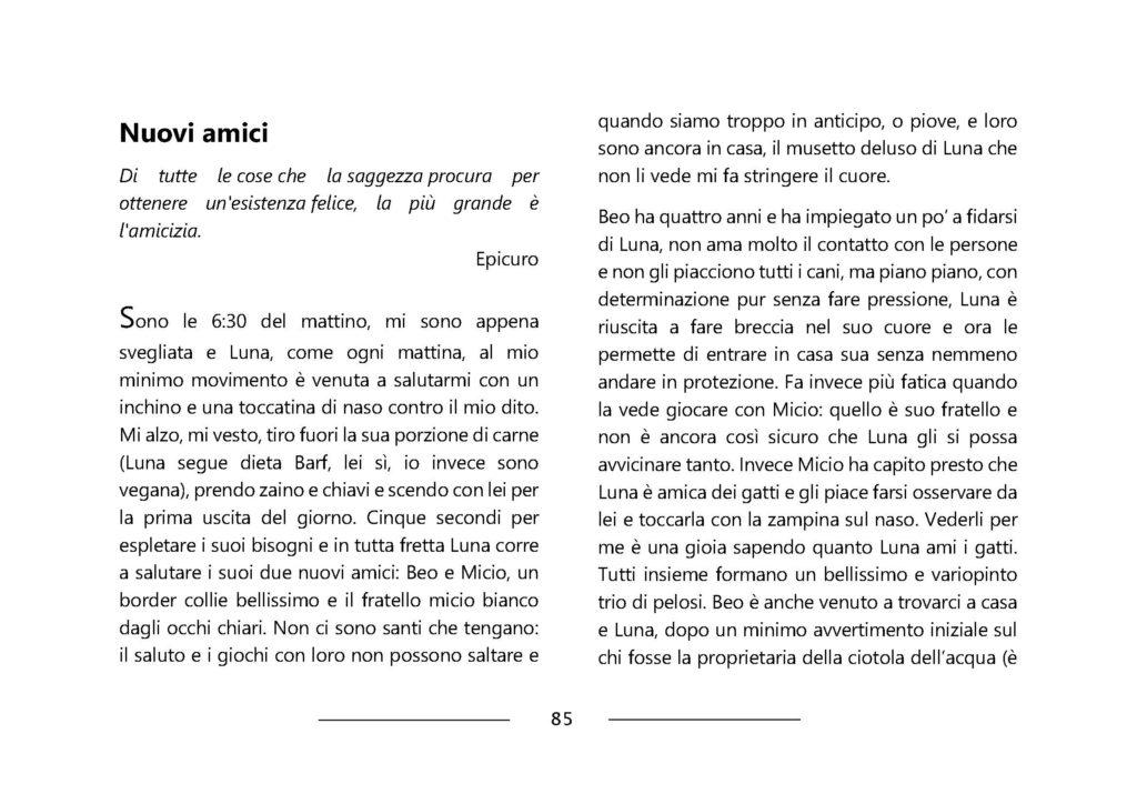 https://www.progettoempatia.com/wp-content/uploads/2020/03/Luna-va-in-montagna-c-09-2019-Olivucci-rel.03-9.09.2019_Rev.-stampa-light_Pagina_085-1024x724.jpg
