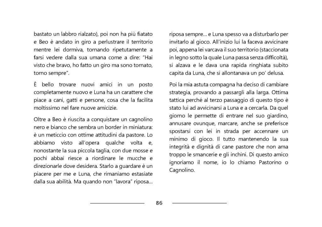 https://www.progettoempatia.com/wp-content/uploads/2020/03/Luna-va-in-montagna-c-09-2019-Olivucci-rel.03-9.09.2019_Rev.-stampa-light_Pagina_086-1024x724.jpg