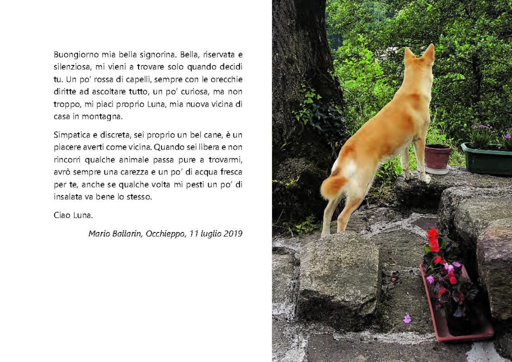 https://www.progettoempatia.com/wp-content/uploads/2020/03/Luna-va-in-montagna-c-09-2019-Olivucci-rel.03-9.09.2019_Rev.-stampa-light_Pagina_102-1024x724.jpg