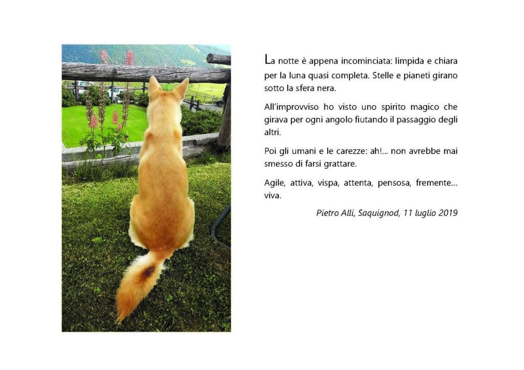 https://www.progettoempatia.com/wp-content/uploads/2020/03/Luna-va-in-montagna-c-09-2019-Olivucci-rel.03-9.09.2019_Rev.-stampa-light_Pagina_103-1024x724.jpg