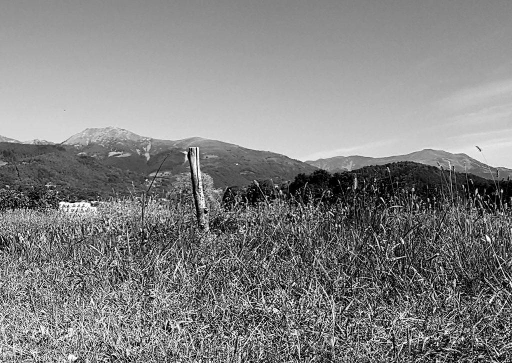 https://www.progettoempatia.com/wp-content/uploads/2020/03/Luna-va-in-montagna-c-09-2019-Olivucci-rel.03-9.09.2019_Rev.-stampa-light_Pagina_121-1024x725.jpg